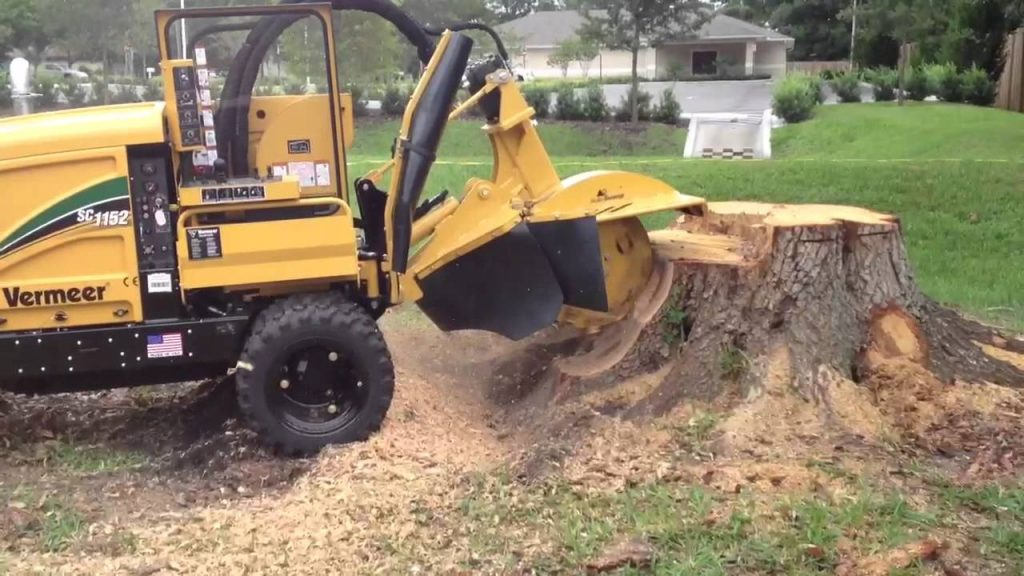 Our stump grinder at work